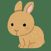 【進化の抑圧】もっと「大きなウサギ」がいない理由を解明!