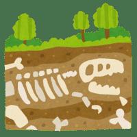 【化石】「ヤマトサウルス・イザナギイ」と命名 淡路島で化石で発見された新種の恐竜