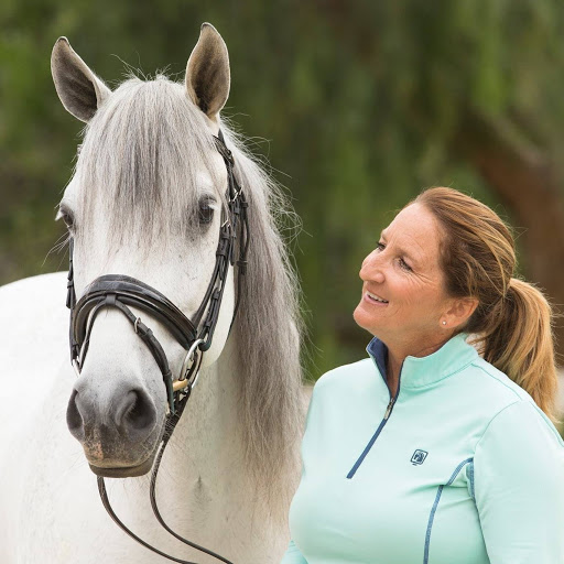 Polly Limond Dressage & Working Equitation