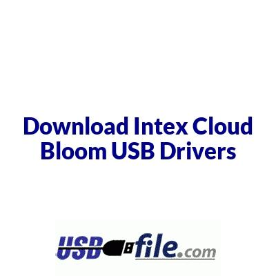 Intex Cloud Bloom
