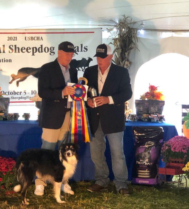 2021 National Sheepdog Open Champion - Alasdair MacRae and Tweed