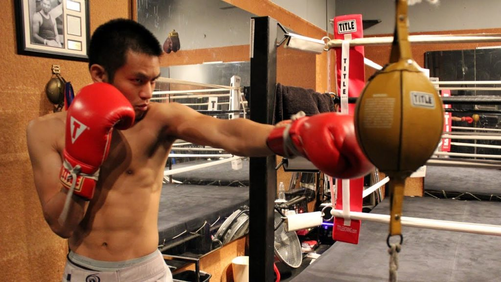 speed bag vs double end bag