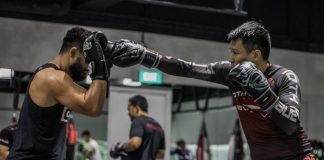 when should i start sparring in boxing