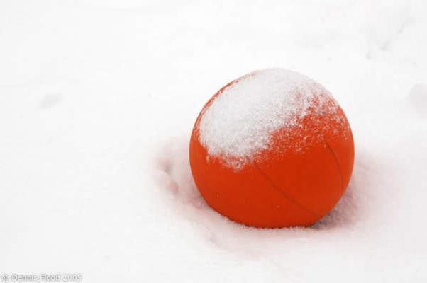m-basketball-in-the-snow-7731[1]