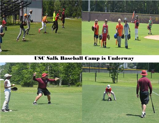 baseball camp collage