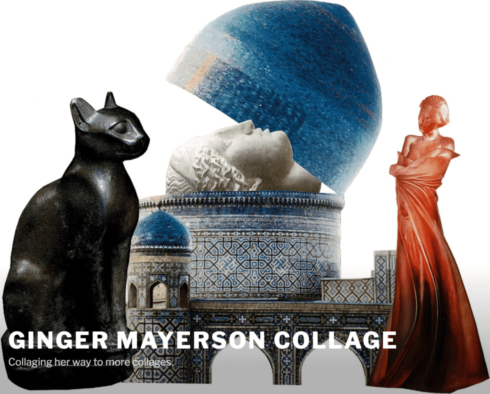 Ginger Mayerson College (website photo and link)
