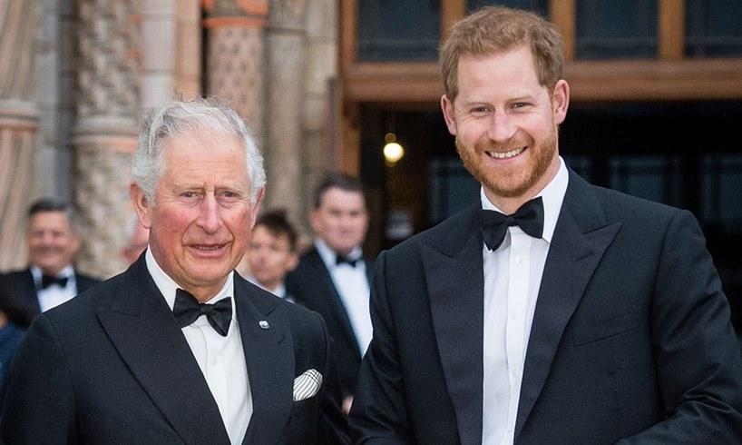 Charles Prince Harry Meghan Markle New Adventures