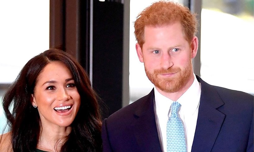 Meghan Markle Prince Harry Michelle Obama Praises New Book