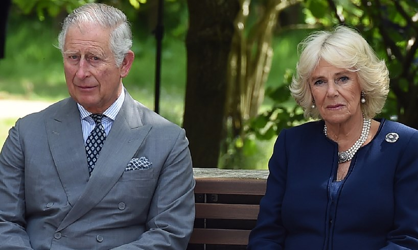 Prince Charles Camilla Parker Bowles William Harry Meeting