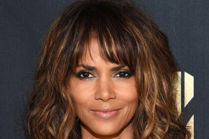Halle Berry Gabriel Aubry Court Fight Support