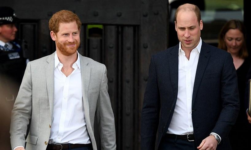 Prince Harry William Peace Zara Tindall Photo