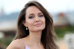 Angelina Jolie Brad Pitt Messy Joint Custody Jonny Lee Miller