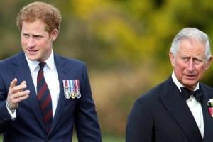 Prince Harry Charles Meghan Markle Drama Fear