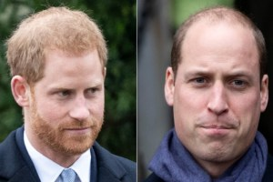 Prince Harry William Meghan Markle New Book