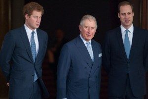 Prince Harry Charles William Meghan Markle New Book