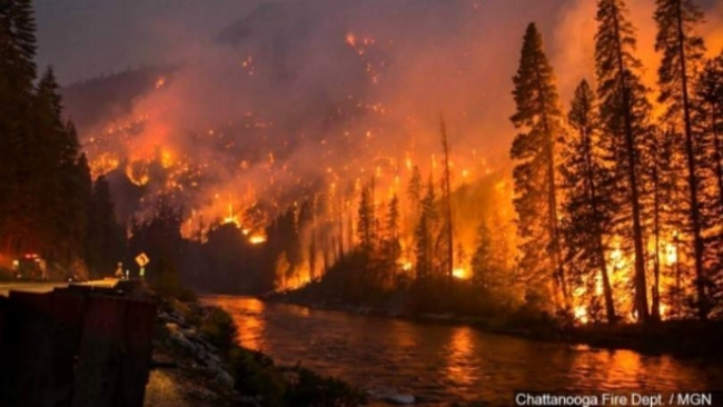 Money Falling Live Wallpaper Great Smoky Mountain Fire Devastation Us Daily Review