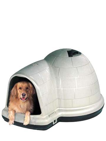 Dog Houses For Sale Craigslist : houses, craigslist, Igloo, House, Craigslist, Online