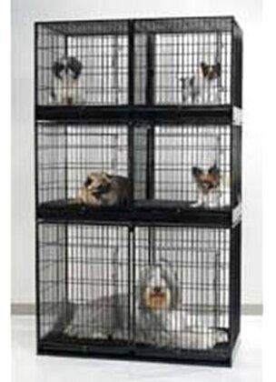 Dog Houses For Sale Craigslist : houses, craigslist, Small