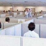 cubicles kill office pan 11246
