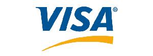 Visa Logo 100