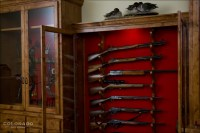 Download Gun Cabinet In Wall Plan Plans DIY How To Build A
