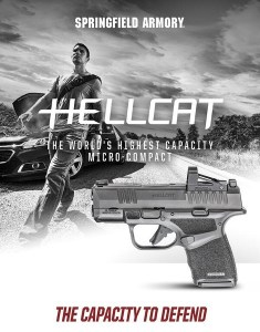 Hellcat  Micro compact in 9mm