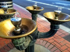 Drinking fountains downtown (Portland)