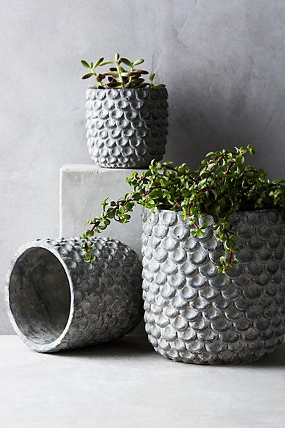 19 beautiful diy cement crafts to add diversity to your interior 19 beautiful diy cement crafts to add diversity to your interior decor usefuldiyprojects 19 solutioingenieria Image collections