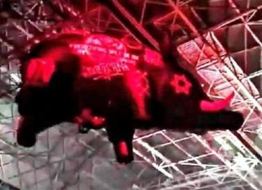 Roger+Waters+Pig