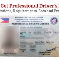 Get Professional Drivers License