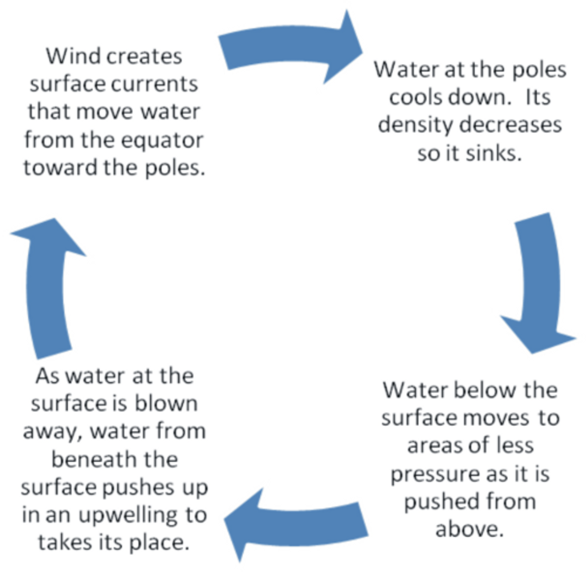 What Are The Steps Of The Water Cycle