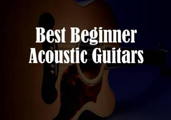 Best Guitar For Beginners  How To Chose The Right One