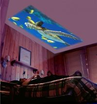 Big Screen Home Theater - on the BEDROOM CEILING - DIY for ...