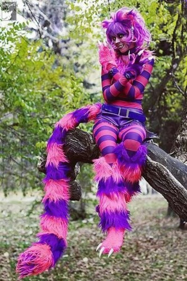 Diy Halloween Costume Ideas Holidappy