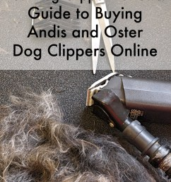 guide to buying andis and oster dog clippers [ 1024 x 1365 Pixel ]