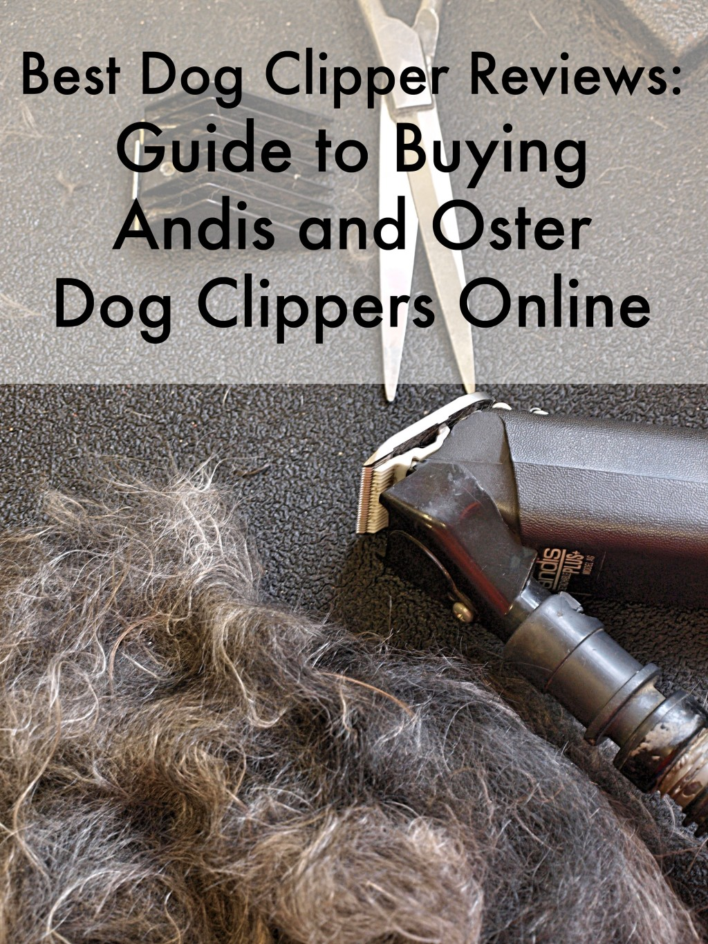 hight resolution of guide to buying andis and oster dog clippers
