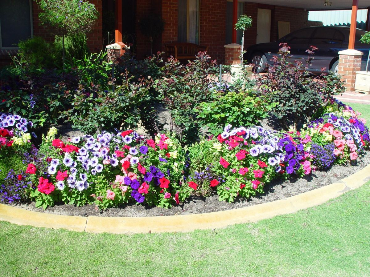 How Plant Flower Garden