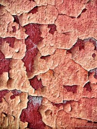 How to Prevent Paint-Peeling on Walls or Ceilings | Dengarden