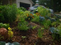 Edible Landscaping in the Front Yard | Dengarden