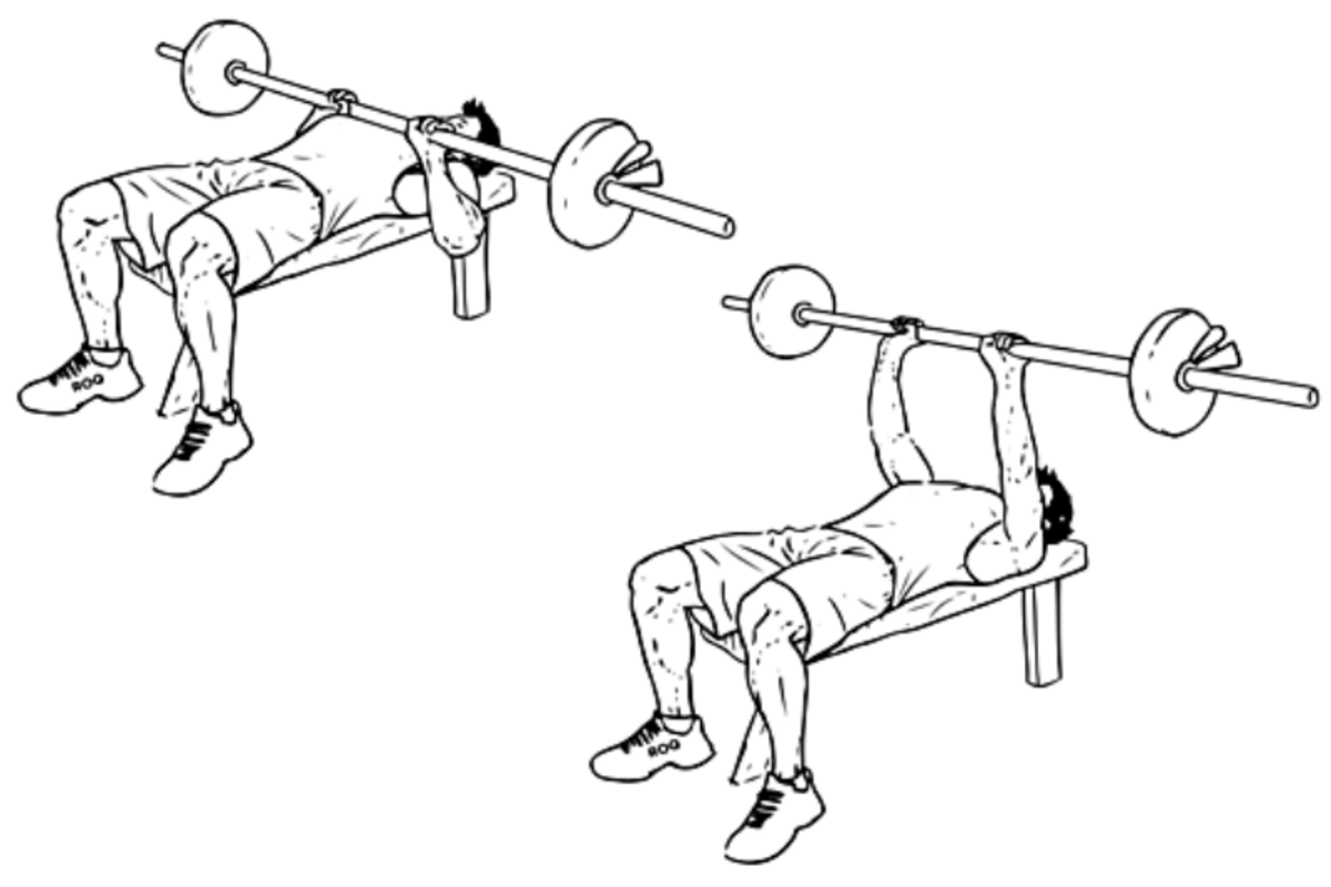 How To Build Big Arms With The Close Grip Bench Press