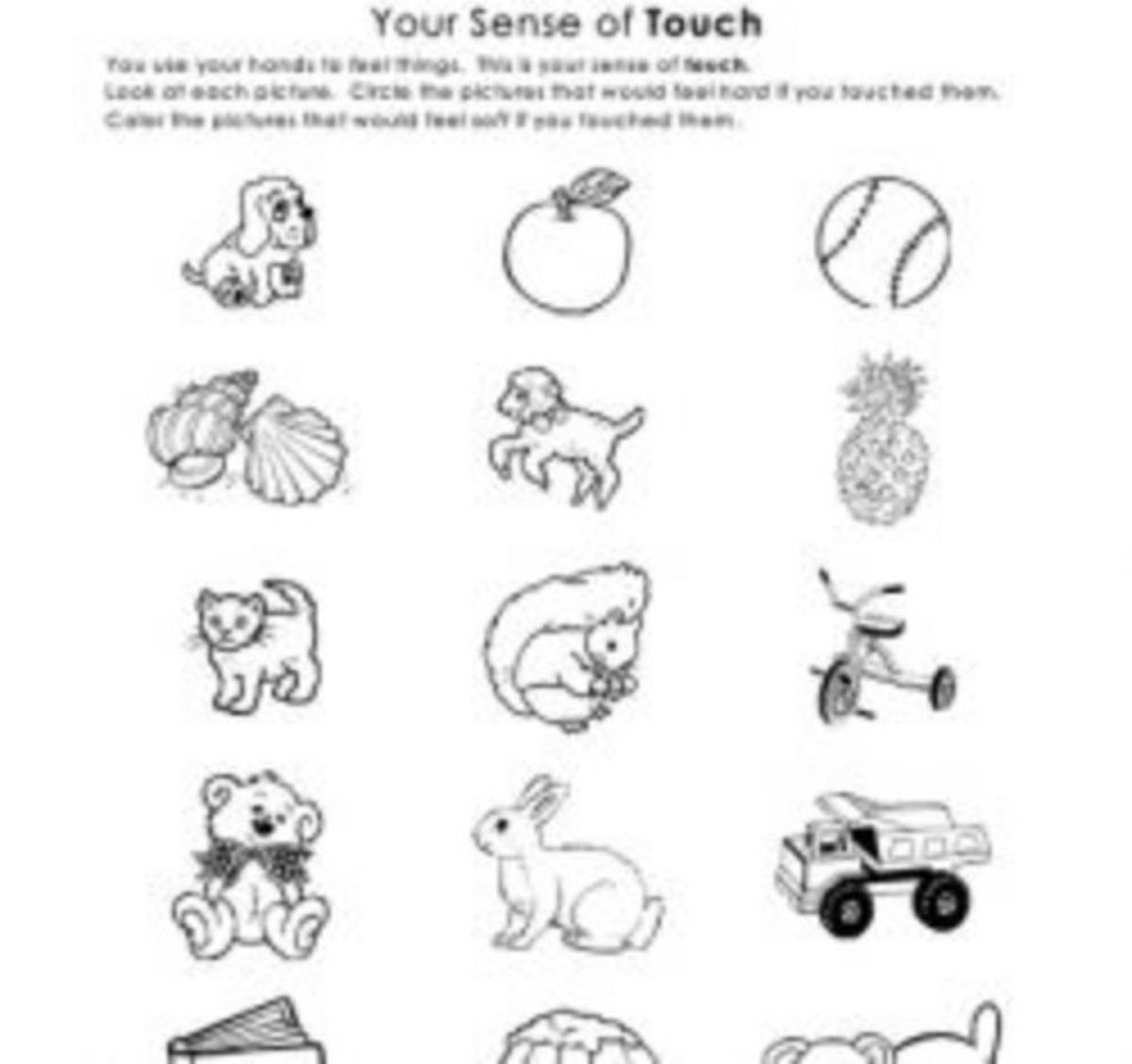 Teaching Sense Of Touch
