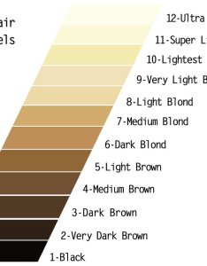 Natural hair color chart also diy how to use wella charm toner bellatory rh