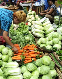 What are the vegetables grown in philippines also hubpages rh