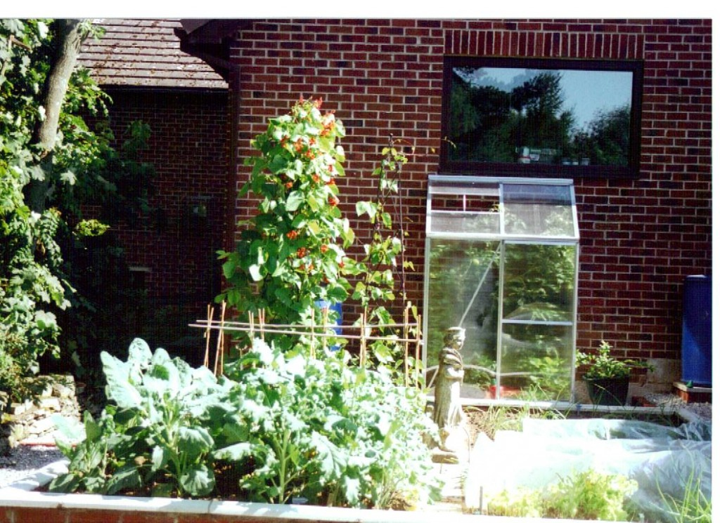 Raised Vegetable Garden Design Layout