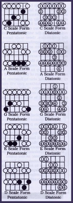 Play Guitar: Diatonic Scales & Lead Patterns | Spinditty