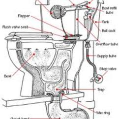 Mansfield Flush Valve Diagram Wiring Single Phase Motor With Capacitor How Does A Toilet Work - Basics 101 | Hubpages