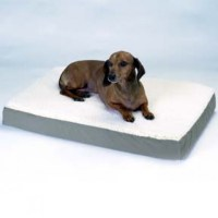 The Different Types of Dog Beds | HubPages