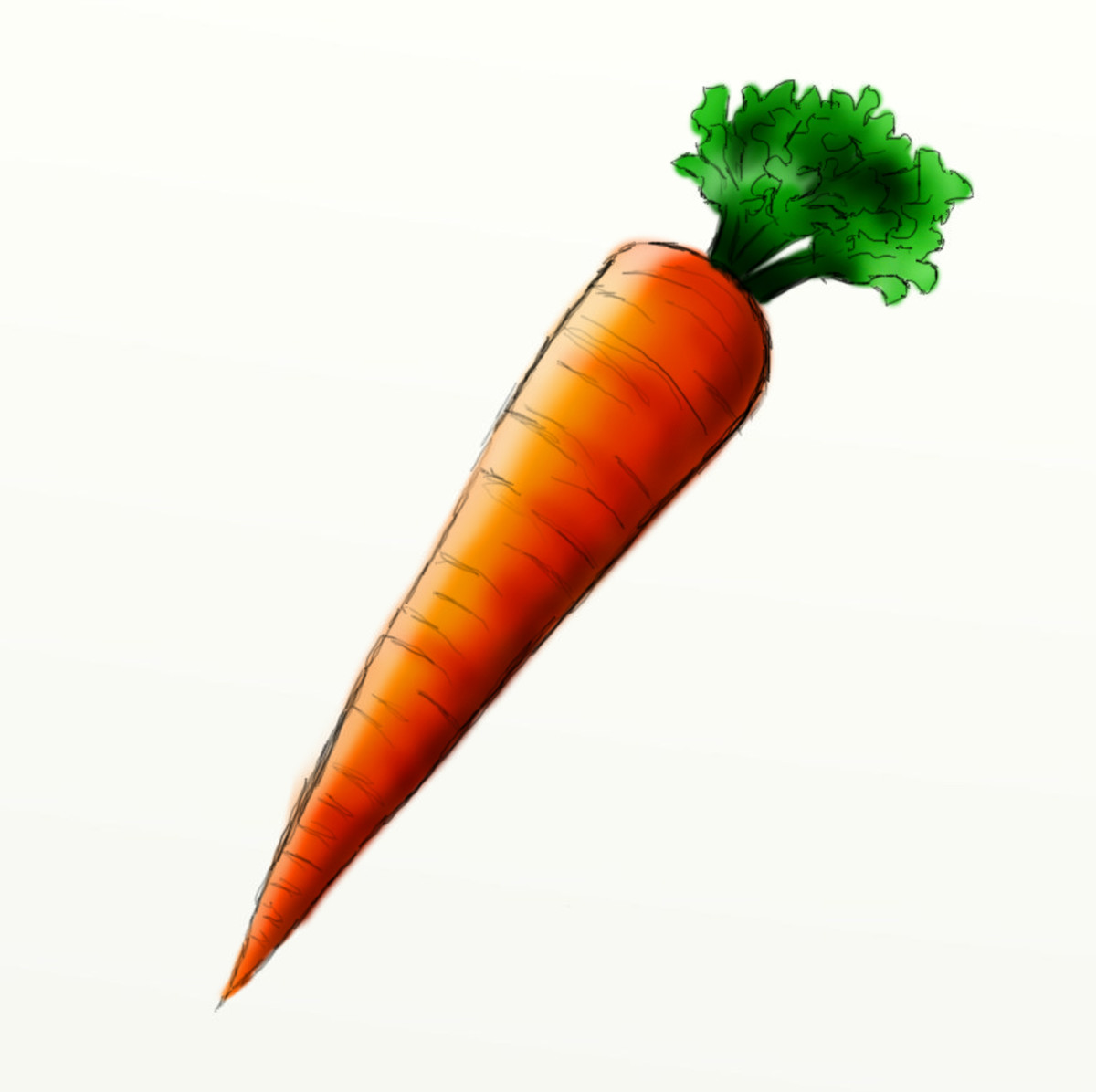 How To Draw A Carrot Hubpages