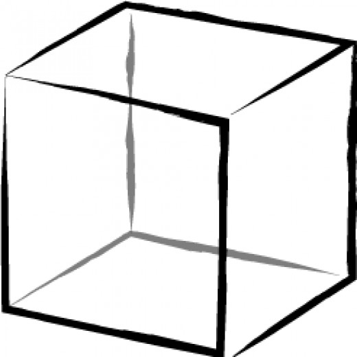 Personality Test: The Field, Cube, Ladder, & Flower