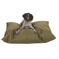 The Different Types of Dog Beds